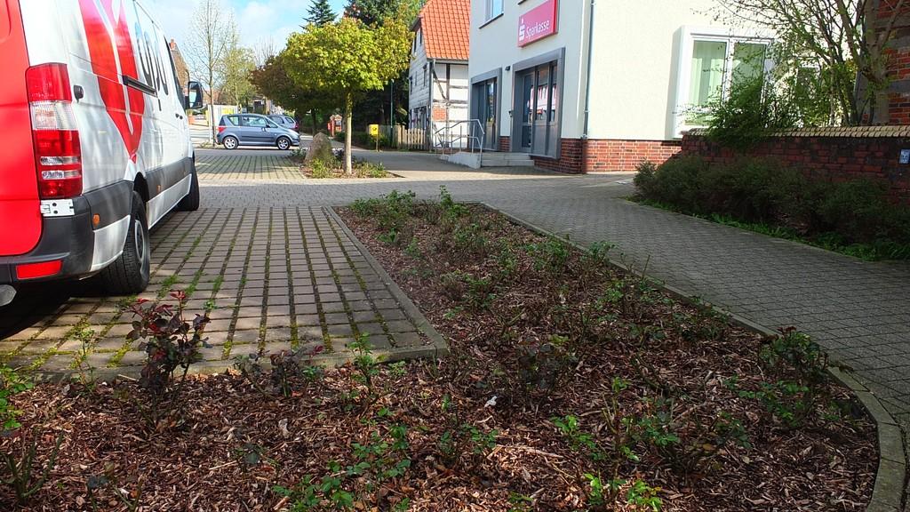 www.gelbesblatt.info CDU-Ortsverband Adenstedt pflegt Rosenbeete