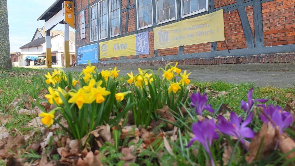 www.gelbesblatt.info 5000 Blüten für Adenstedt